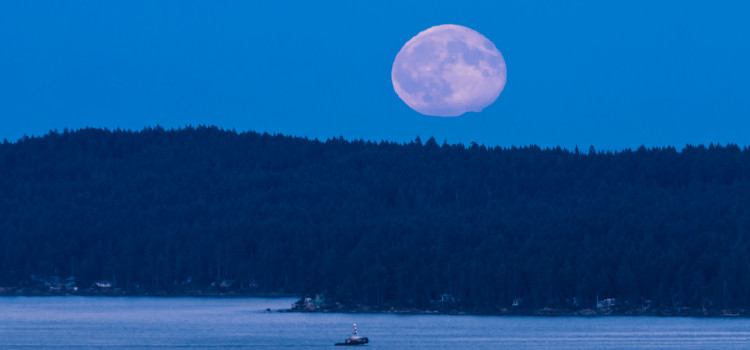 Blue Moon for Nanaimo